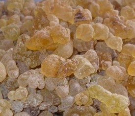 Image of Frankincense/Olibanum Oil (carterii)