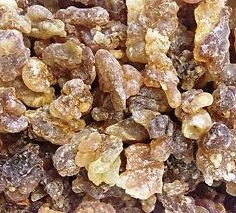 Image of Frankincense/Olibanum Oil (sacra)